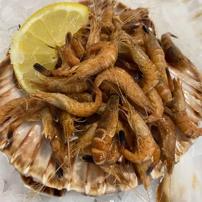 Crevettes Grises Françaises