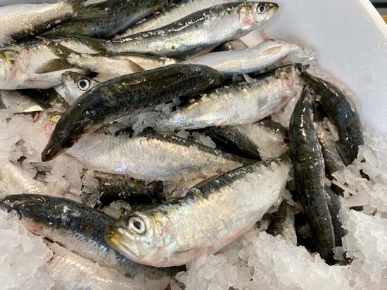 Sardines Entières Atlantique