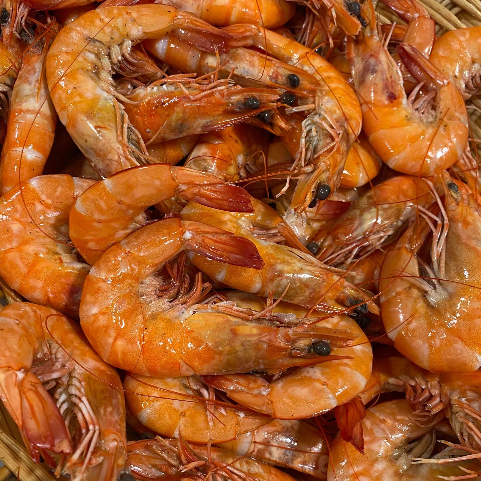 Crevettes Equateur cuites Maison